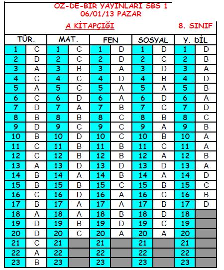 2013 Özdebir 8.Sınıf 1. Seviye Belirleme (SBS 8-D/I ) Cevap Anahtarı 2