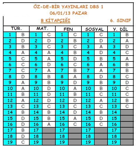 2013 Özdebir 6.Sınıf 1. Düzey Belirleme (DBS 6-D/I ) Cevap Anahtarı 3