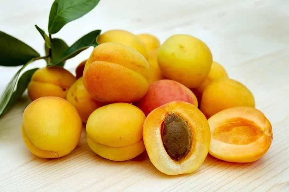 Ramazan'da Tok Tutan Gıdalar 10
