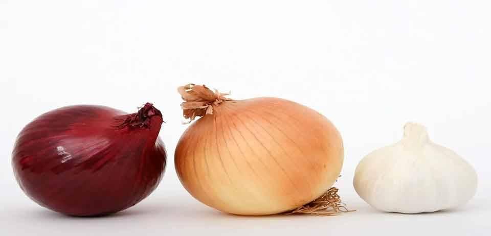 Mor soğanın faydalarına şaşıracaksınız 10
