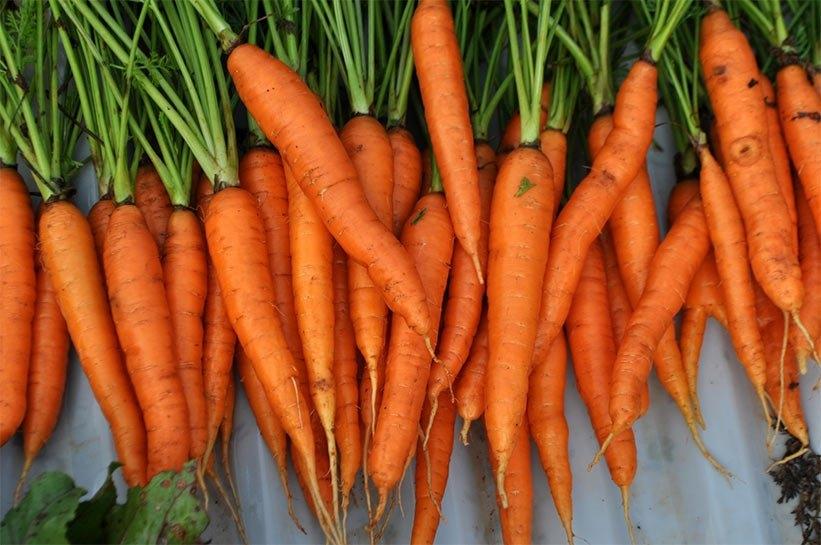 Güzel bir cilt için tüketmeniz gereken 10 gıda 9