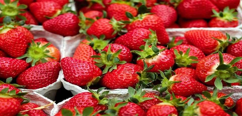 Beslenme uzmanlarının tükettiği yiyecekler 6