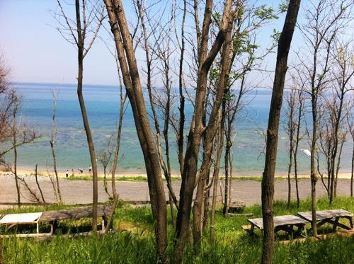 İstanbul'da Piknik Yapılacak 10 Yer 4
