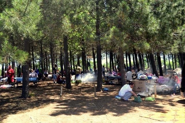 İstanbul'da Piknik Yapılacak 10 Yer 5