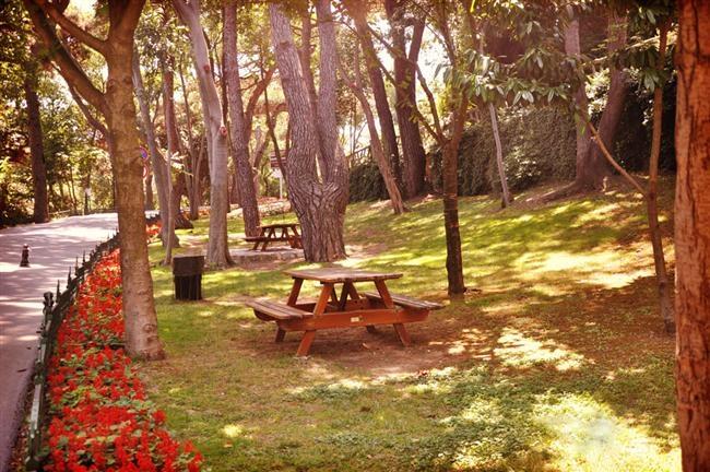 İstanbul'da Piknik Yapılacak 10 Yer 7