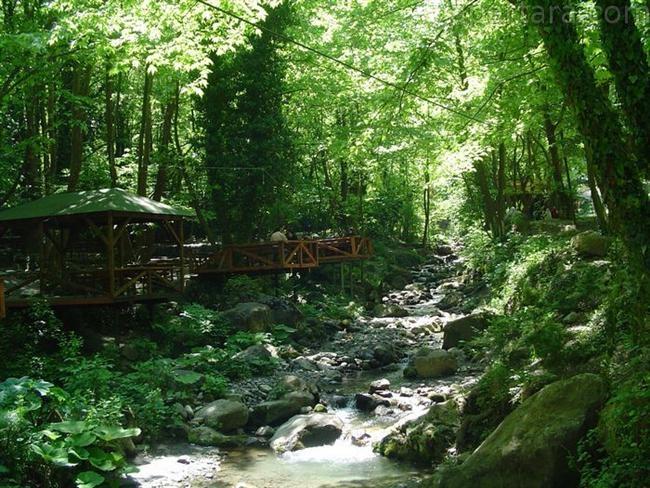 İstanbul'da Piknik Yapılacak 10 Yer 9