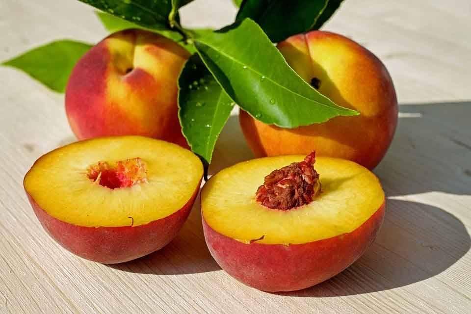 Oruç Tutarken Susuzluğu Gideren Gıdalar 3