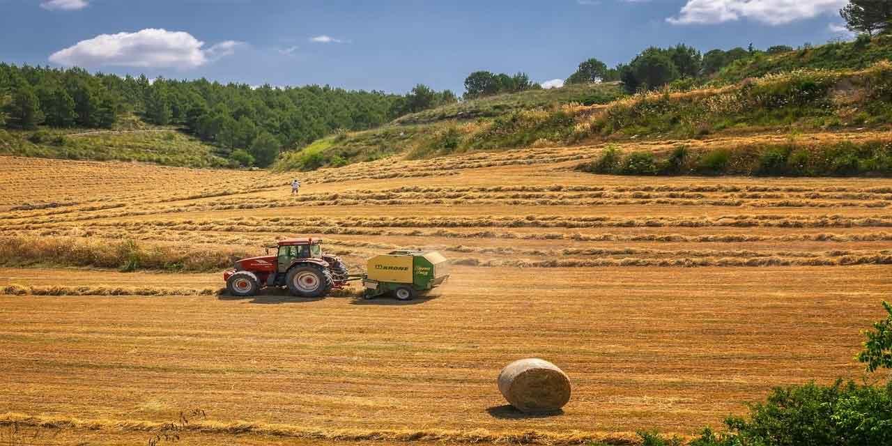 Tarımda bir yılda toplanan ürünlerin tamamını anlatan ifade hangisidir
