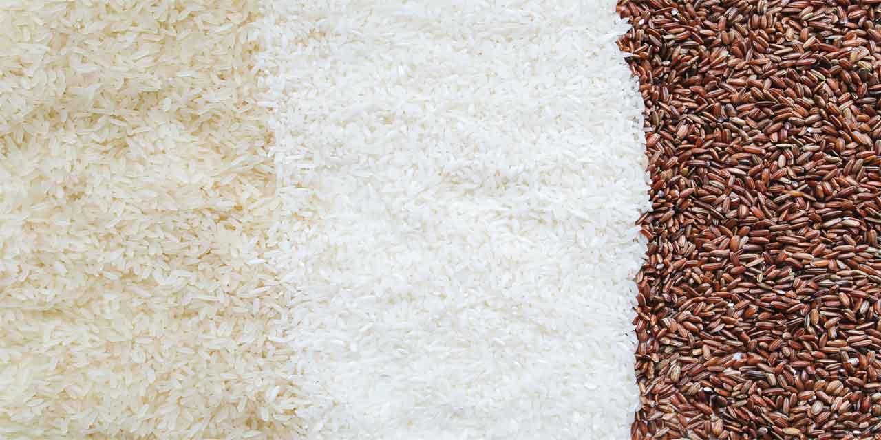 Çin Seddi'nin yapımında hangisinden elde edilen harç kullanılmıştır