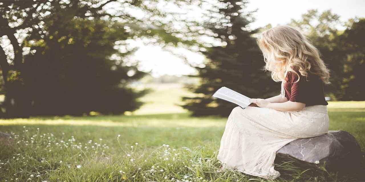 Kitap özeti nasıl yazılır
