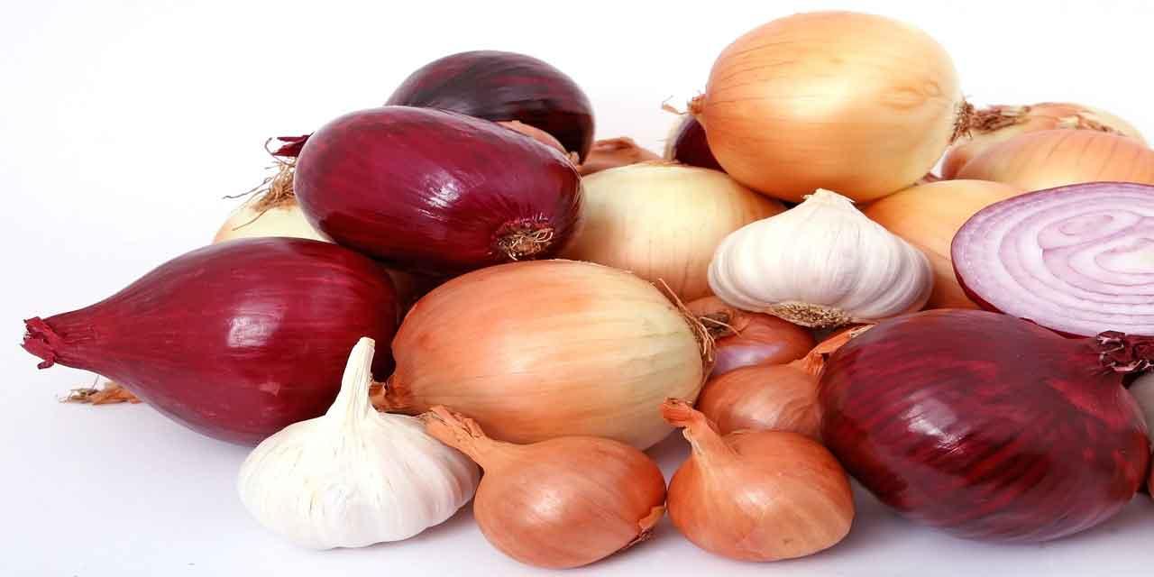 Dünyanın en ağır soğanı kaç kilo