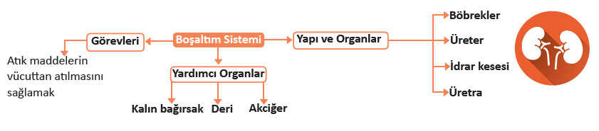 bosaltim-sistemi.jpg
