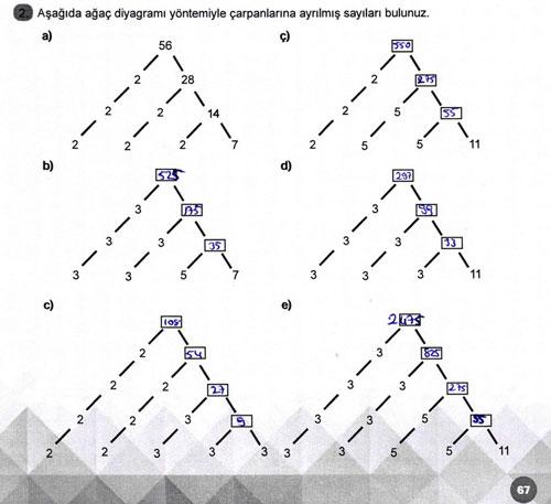 6.-sinif-meb-matematik-sayfa-67-.jpg